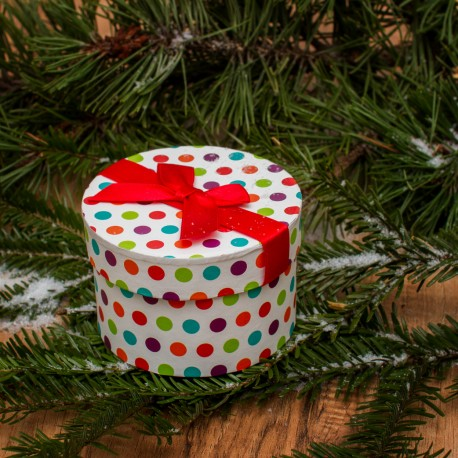 Das Geschenk (Musicaltext)